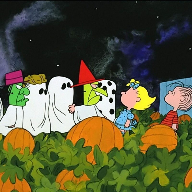 10 Best Charlie Brown Halloween Wallpapers FULL HD 1920×1080 For PC Background 2020 free download charlie brown halloween wallpapers wallpaper cave 800x800