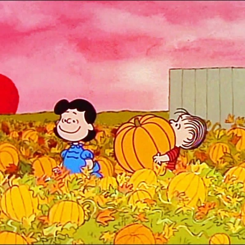10 Latest Peanuts Halloween Desktop Wallpaper FULL HD 1920×1080 For PC Background 2020 free download charlie brown hd wallpapers backgrounds wallpaper hd wallpapers 2 800x800