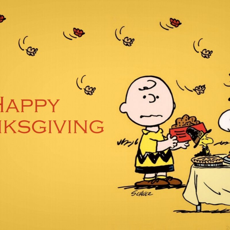 10 New Charlie Brown Thanksgiving Wallpaper FULL HD 1080p For PC Desktop 2018 free download charlie brown thanksgiving 4k wallpaper free 4k wallpaper 800x800