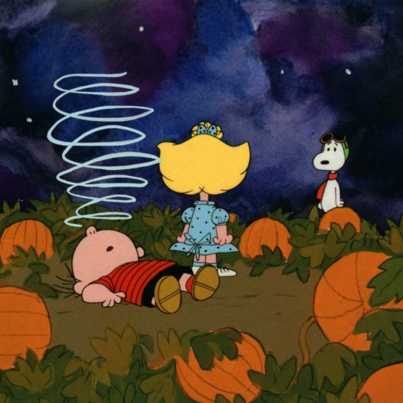 10 Latest Peanuts Halloween Desktop Wallpaper FULL HD 1920×1080 For PC Background 2020 free download charlie brown thanksgiving desktop wallpaper 49 images 800x800
