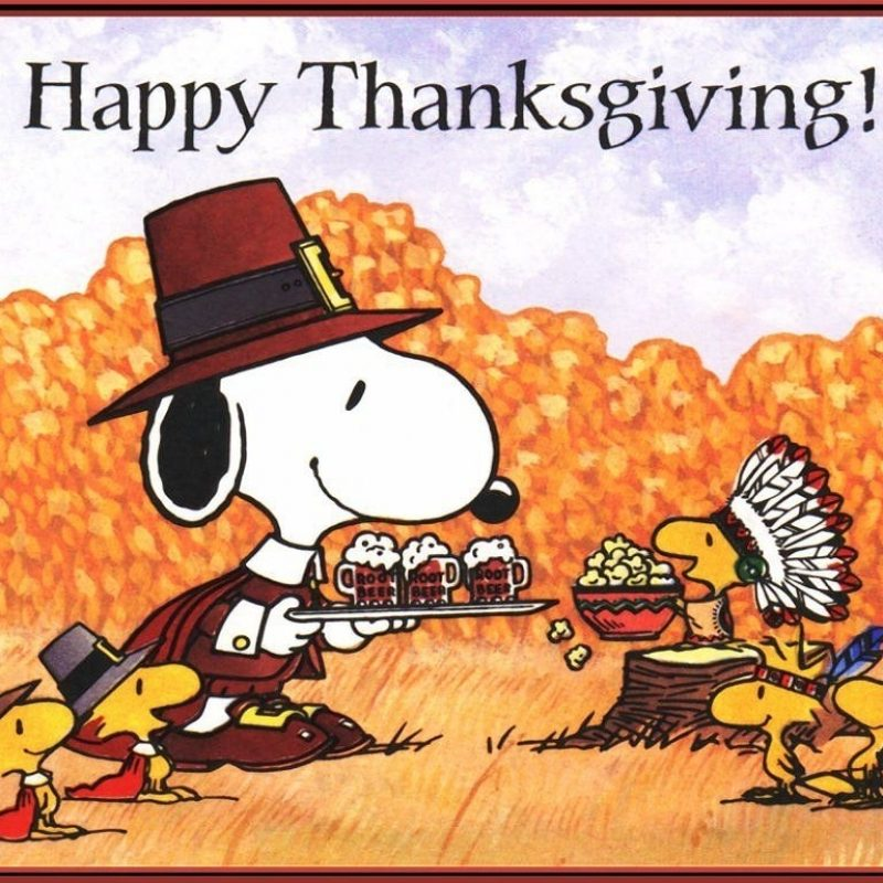 10 New Charlie Brown Thanksgiving Wallpaper FULL HD 1080p For PC Desktop 2018 free download charlie brown thanksgiving wallpaper happy thanksgiving wallpaper 800x800