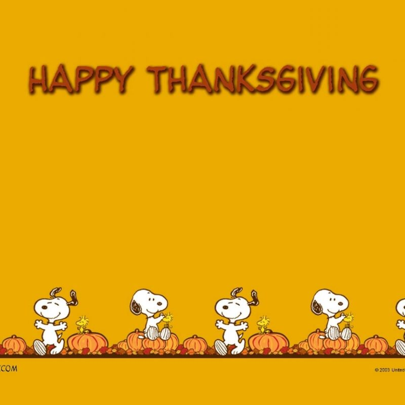10 New Charlie Brown Thanksgiving Wallpaper FULL HD 1080p For PC Desktop 2018 free download charlie brown thanksgiving wallpapers thanksgiving day pinterest 800x800