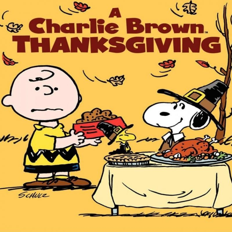 10 New Charlie Brown Thanksgiving Wallpaper FULL HD 1080p For PC Desktop 2018 free download charlie brown thanksgiving wallpapers wallpaper cave 800x800