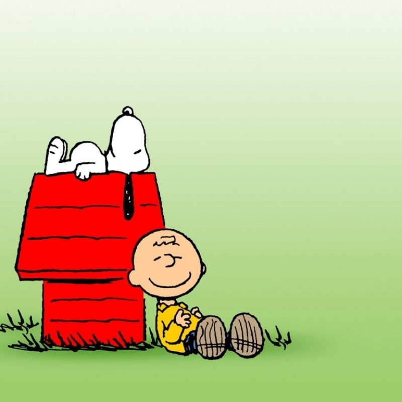 10 Latest Free Charlie Brown Wallpapers FULL HD 1080p For PC Background 2018 free download charlie brown wallpaper 14845 1024x768 px hdwallsource 800x800