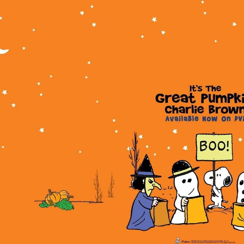 10 Most Popular The Great Pumpkin Wallpaper FULL HD 1920×1080 For PC Background 2020 free download charlie brown wallpaper high quality hd great pumpkin of androids 800x800