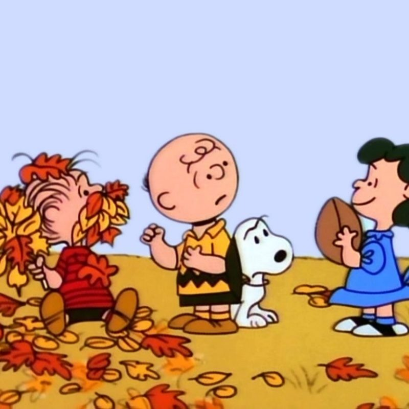 10 New Charlie Brown Thanksgiving Wallpaper FULL HD 1080p For PC Desktop 2018 free download charlie brown wallpapers group 67 1 800x800