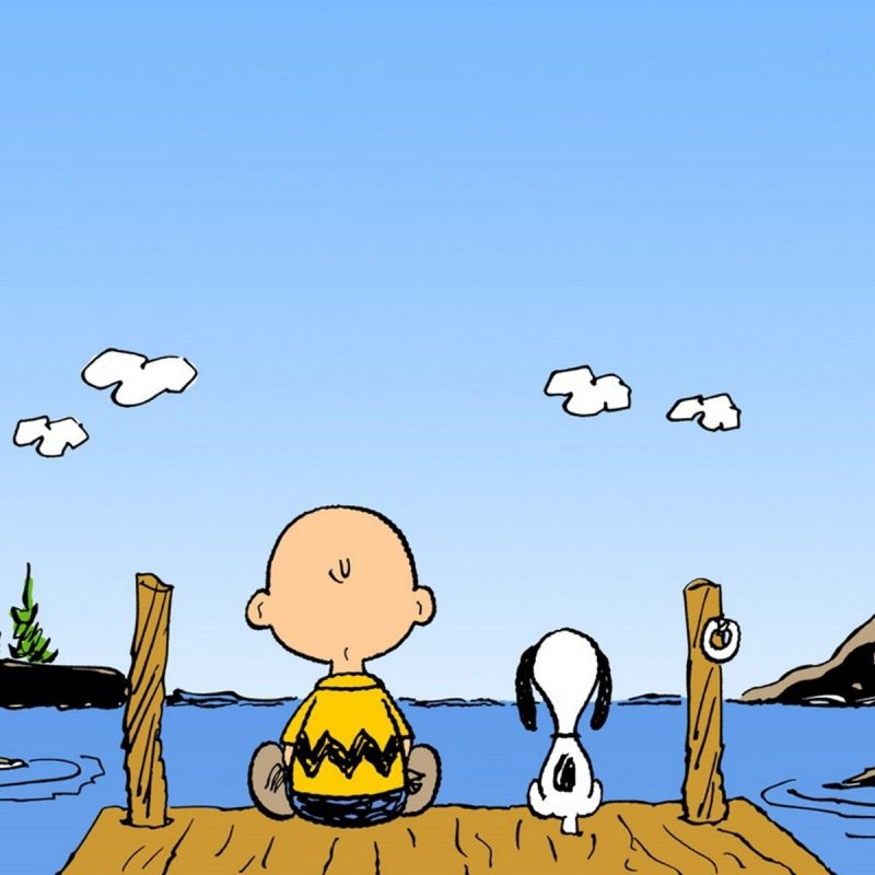 10 Latest Free Charlie Brown Wallpapers FULL HD 1080p For PC Background 2021 free download charlie brown wallpapers group 67 2 800x800