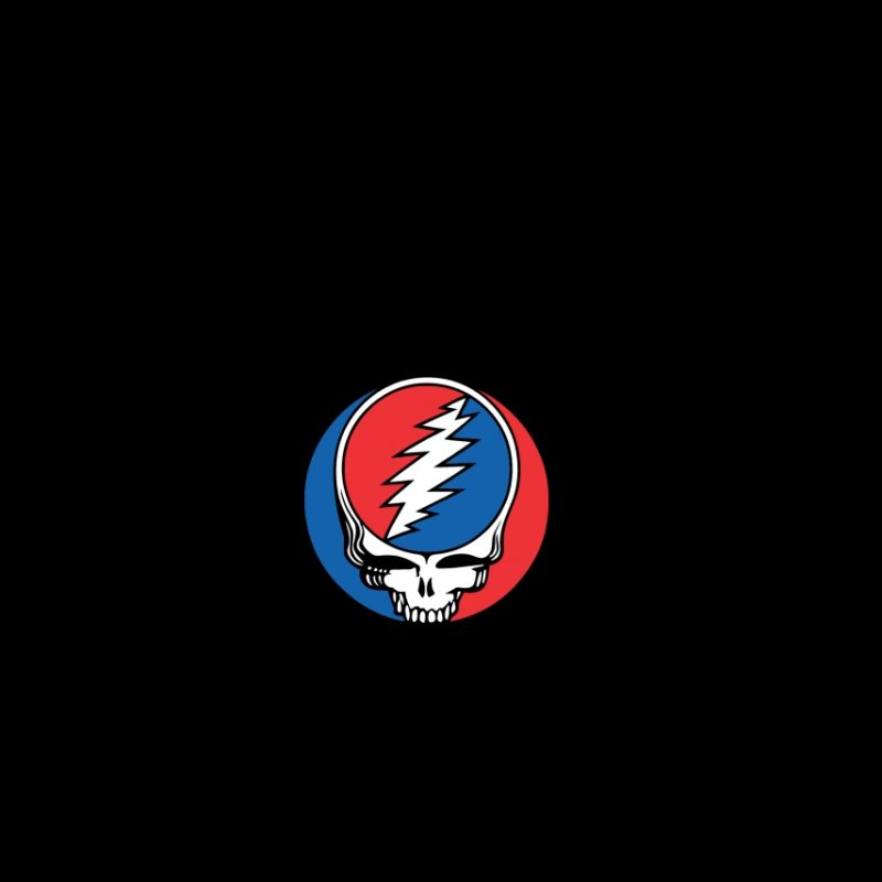 10 Best Steal Your Face Wallpaper FULL HD 1080p For PC Desktop 2018 free download chicago cubs steal your face wallpapers wallpaper cave 800x800