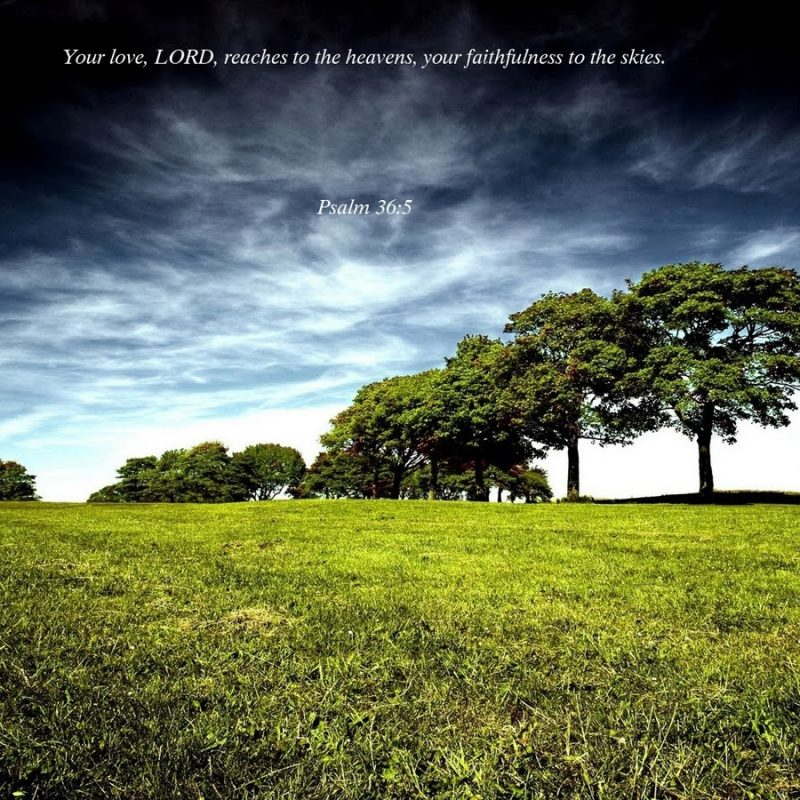 10 Best Hd Scripture Wallpaper FULL HD 1920×1080 For PC Background 2018 free download christmas cards 2012 hd christian dekstop wallpapers 800x800