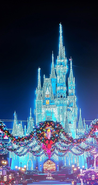 christmas disney magic kingdom castle with the wreaths (photographer