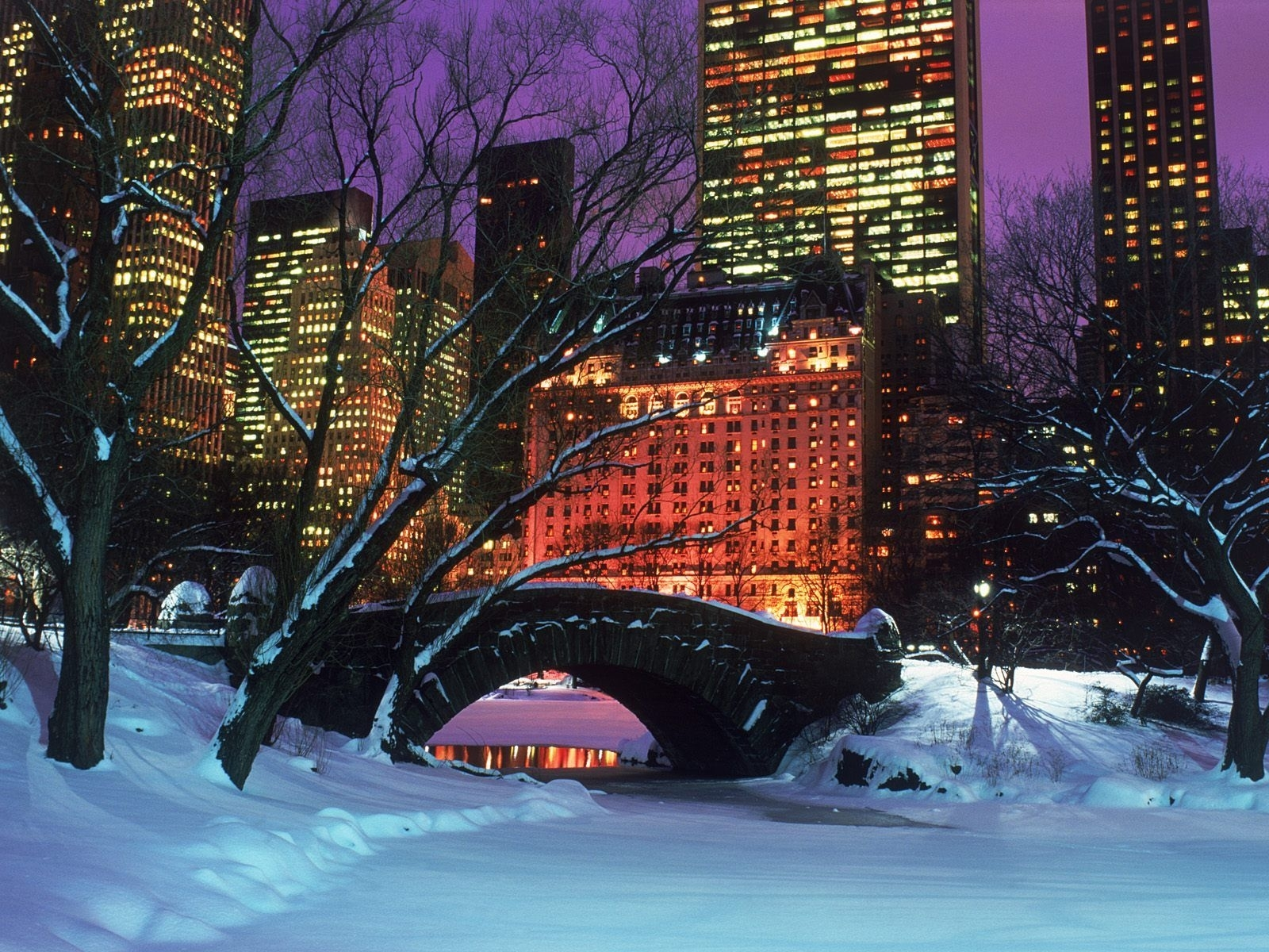 christmas in new york city | central park, christmas time and park