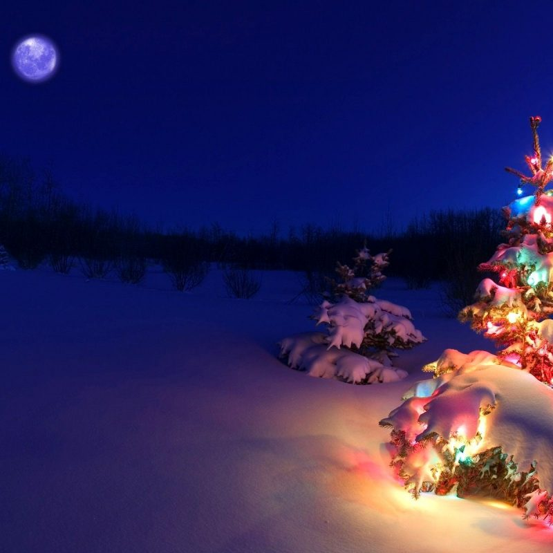10 New Christmas Lights Snow Wallpaper FULL HD 1080p For PC Desktop 2021 free download christmas lights snow wallpaper christmas wallpaper christmas 800x800