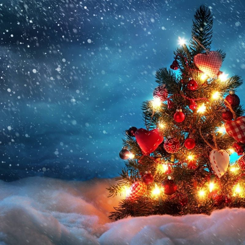 10 New Christmas Lights Snow Wallpaper FULL HD 1080p For PC Desktop 2021 free download christmas lights snow wallpaper free design templates 800x800