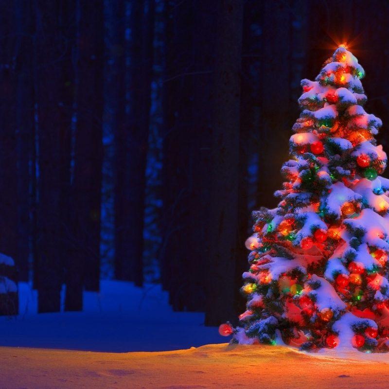 10 New Christmas Lights Snow Wallpaper FULL HD 1080p For PC Desktop 2021 free download christmas lights tree desktop backgrounds wallpaper wiki 1 800x800