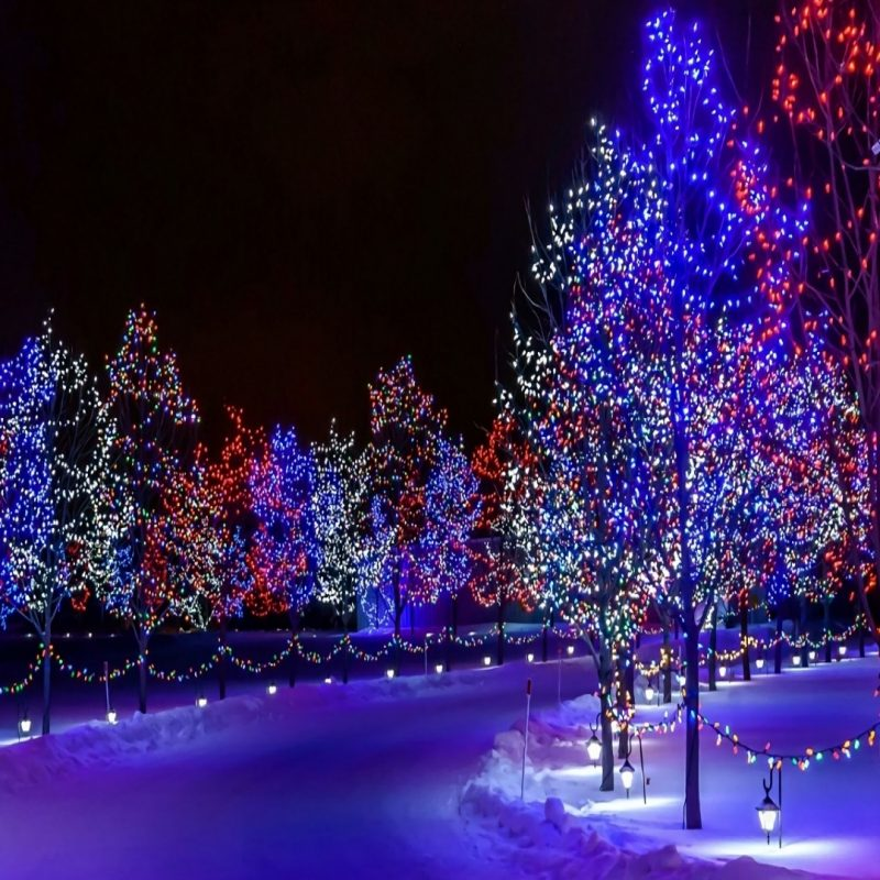 10 Best Winter Christmas Lights Wallpaper FULL HD 1920×1080 For PC Desktop 2018 free download christmas lights wallpaper wallpaper studio 10 tens of thousands 1 800x800