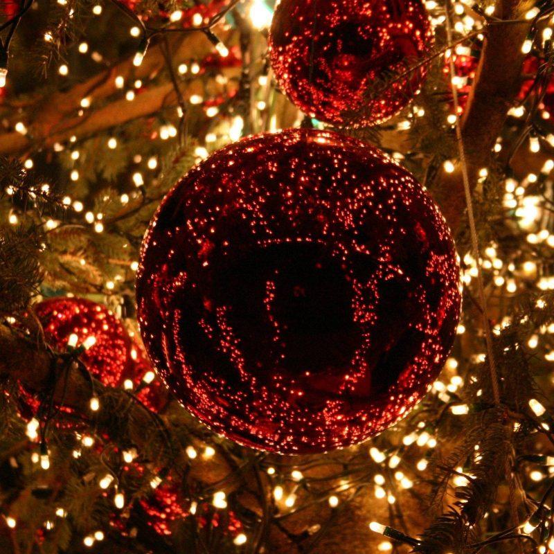 10 Best Christmas Lights Desktop Background FULL HD 1920×1080 For PC Background 2020 free download christmas lights wallpapers wallpaper cave 5 800x800