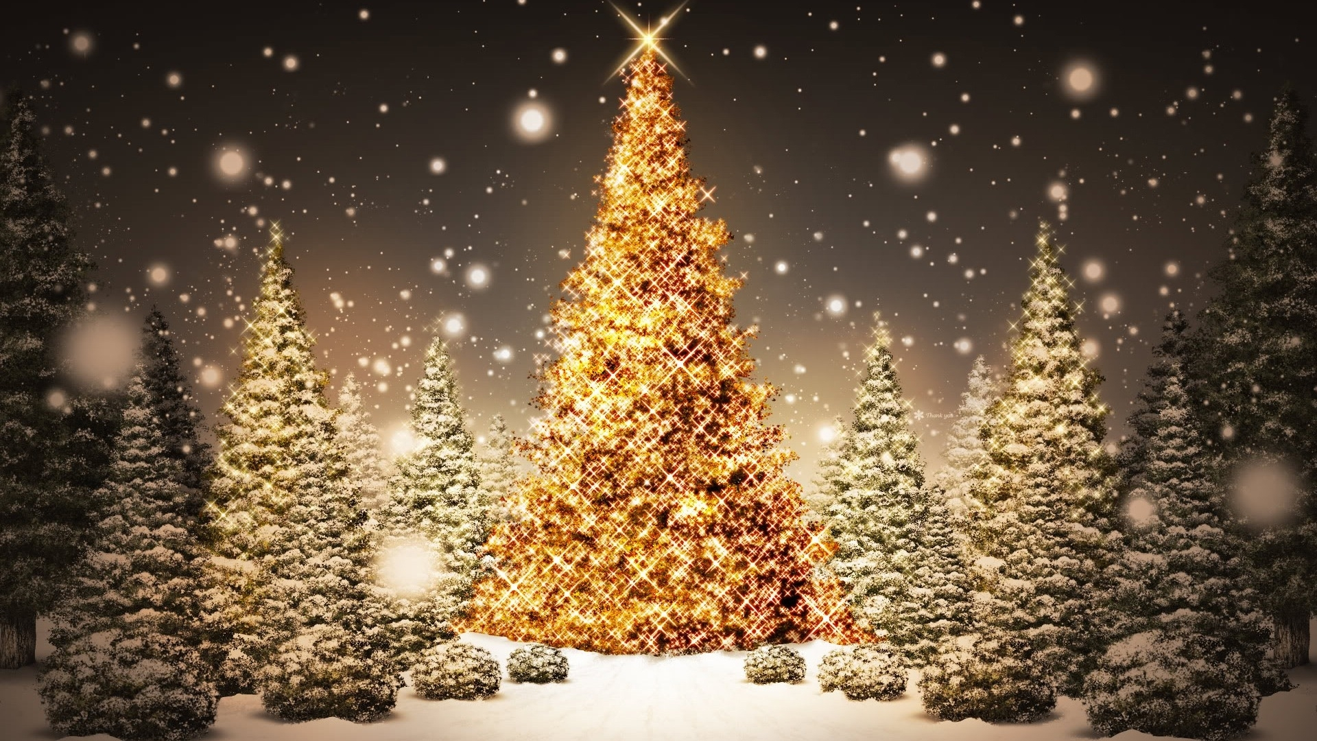 christmas lights widescreen wallpaper. - media file | pixelstalk