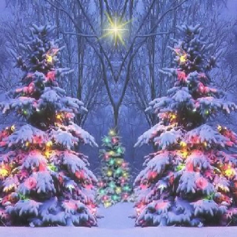 10 Top Christmas Scene Wallpaper Backgrounds FULL HD 1920×1080 For PC Background 2020 free download christmas scene backgrounds hd backgrounds pic 1 800x800