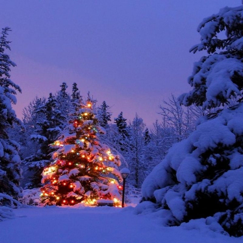 10 Top Christmas Scene Wallpaper Backgrounds FULL HD 1920×1080 For PC Background 2020 free download christmas scene backgrounds wallpaper cave 800x800