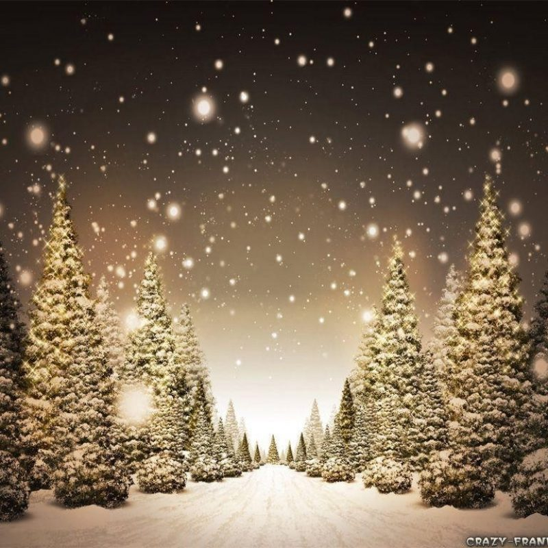 10 Most Popular Snowy Christmas Scenes Photos FULL HD 1920×1080 For PC Background 2021 free download christmas snow scene wallpapers wallpaper cave 800x800