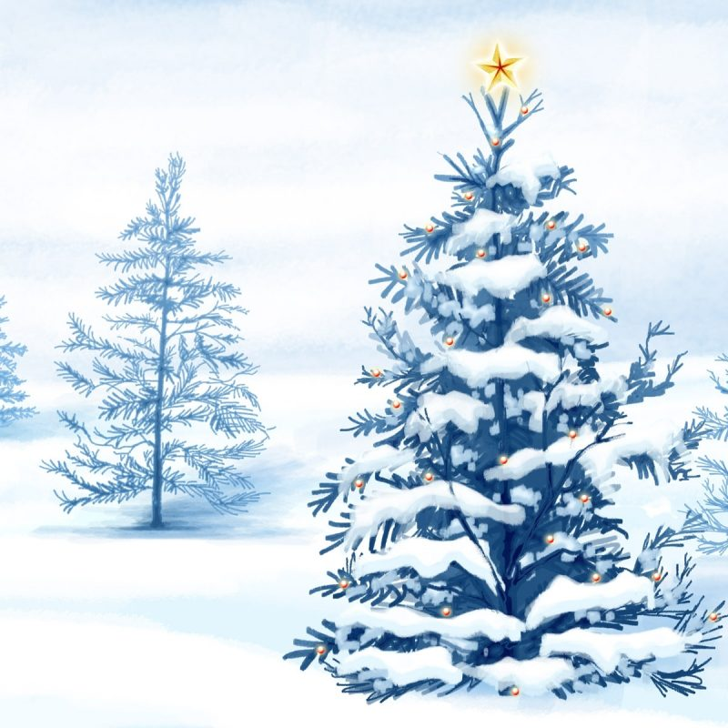 10 Most Popular Christmas Tree Snow Wallpaper Hd FULL HD 1080p For PC Desktop 2020 free download christmas snow trees wallpapers hd wallpapers id 4792 800x800