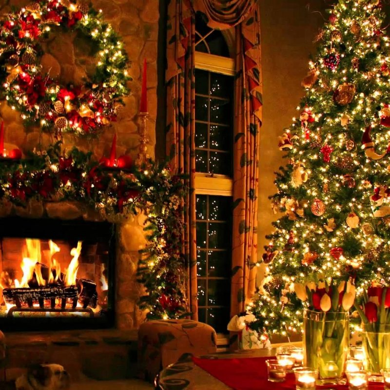 10 Latest Christmas Fireplace Screensaver Free FULL HD 1080p For PC Background 2021 free download christmas tree and fireplace youtube 800x800