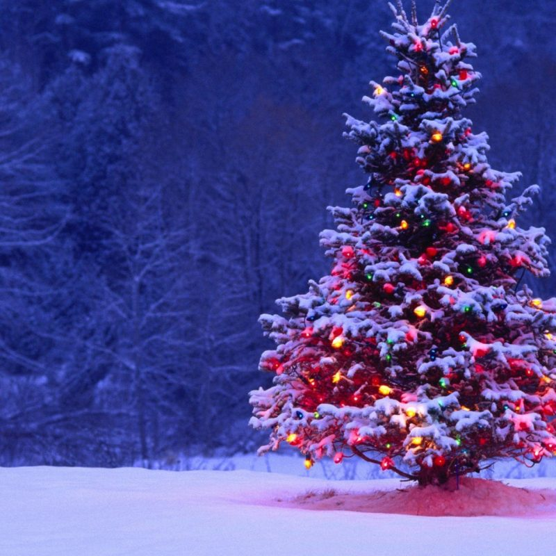 10 New Christmas Lights Snow Wallpaper FULL HD 1080p For PC Desktop 2021 free download christmas tree lights snow forest holiday desktop wallpaper 1 800x800