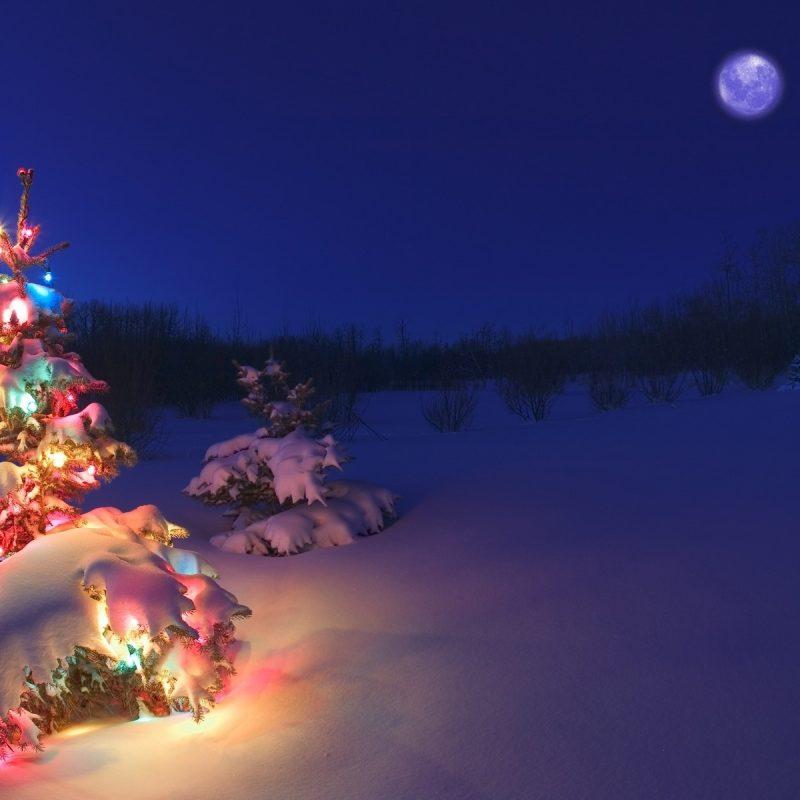 10 Most Popular Christmas Tree Snow Wallpaper Hd FULL HD 1080p For PC Desktop 2020 free download christmas tree lights snow wallpaper hd media file pixelstalk 1 800x800