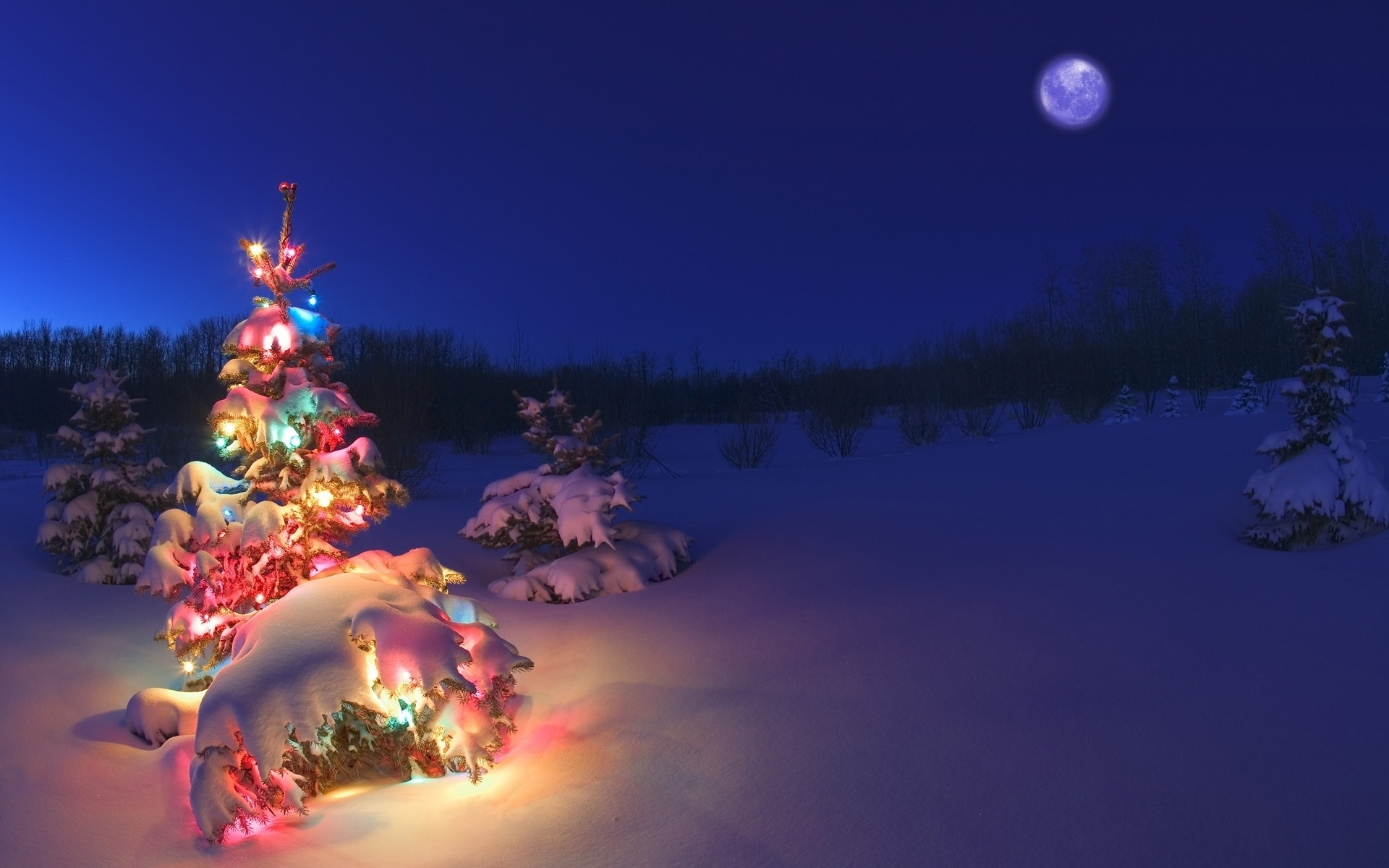 christmas tree lights snow wallpaper hd. - media file | pixelstalk