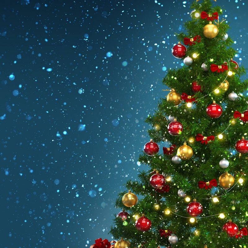 10 Best Christmas Tree Phone Wallpaper FULL HD 1080p For PC Background 2021 free download christmas tree phone wallpaper 80 images 800x800