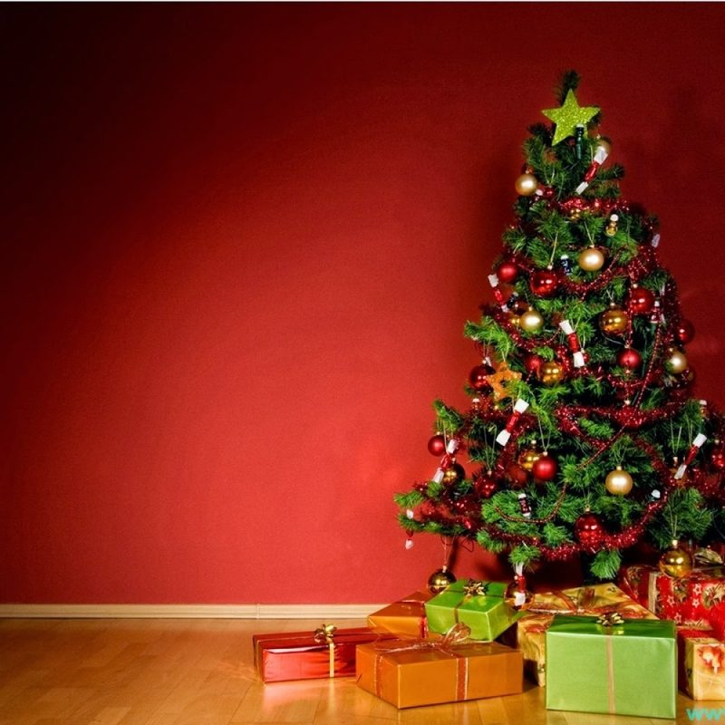 10 New Christmas Tree Wall Paper FULL HD 1920×1080 For PC Desktop 2018 free download christmas tree wallpaper free download 8523 wallpaper walldiskpaper 800x800