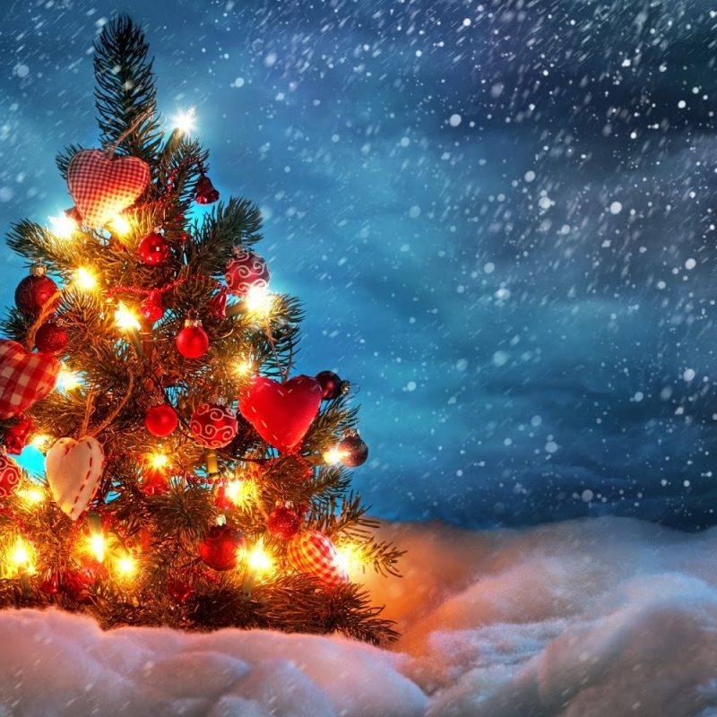 10 New Christmas Tree Wall Paper FULL HD 1920×1080 For PC Desktop 2018 free download christmas tree wallpapers free hd 800x800