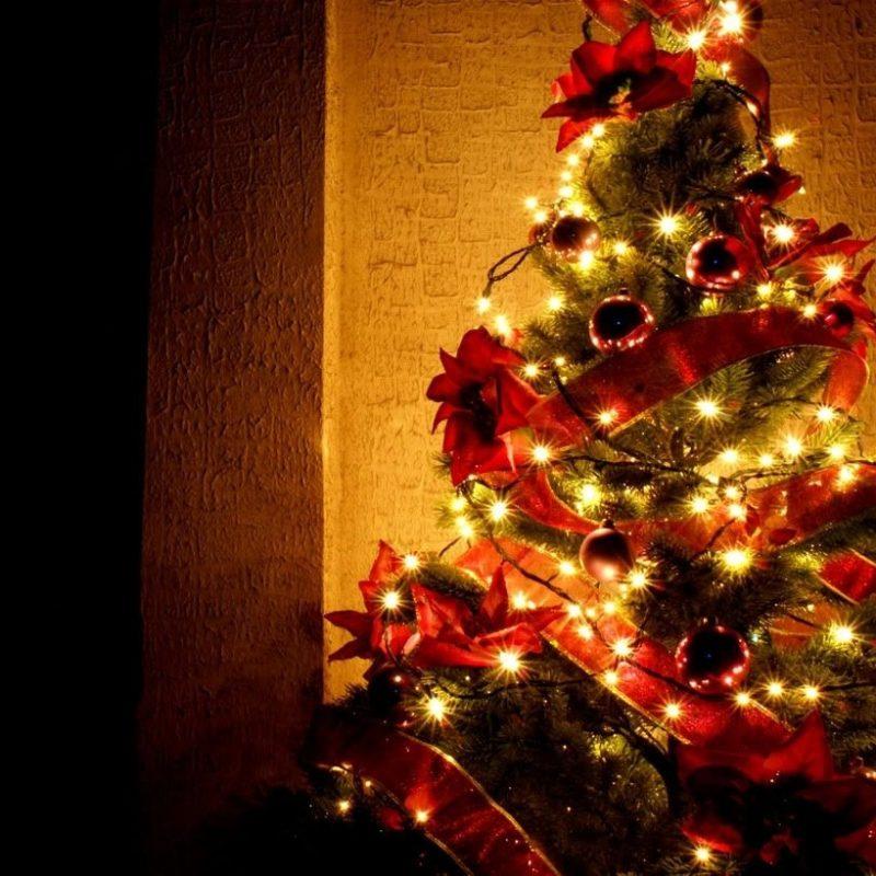 10 Top Christmas Tree Wallpaper Backgrounds FULL HD 1920×1080 For PC Background 2021 free download christmas trees google search christmas pinterest christmas 800x800