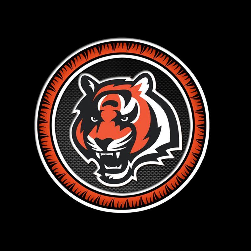 10 New Cincinnati Bengals Hd Wallpaper FULL HD 1080p For PC Background 2020 free download cincinnati bengals circle 2560x1600 photo 800x800