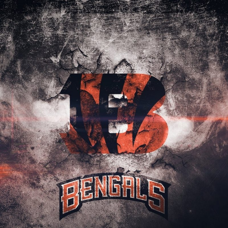 10 New Cincinnati Bengals Hd Wallpaper FULL HD 1080p For PC Background 2020 free download cincinnati bengals wallpaperjdot2dap on deviantart 800x800