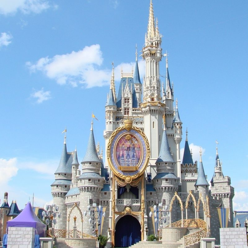 10 Most Popular Walt Disney World Castle Wallpaper FULL HD 1080p For PC Background 2020 free download cinderella castle 800x800