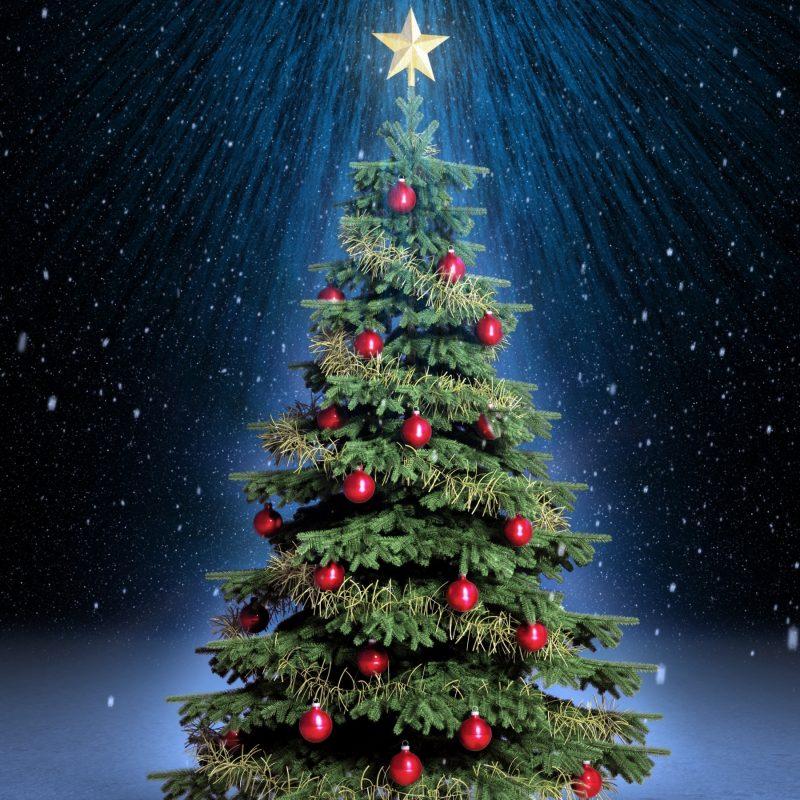 10 New Christmas Tree Wallpaper Hd FULL HD 1080p For PC Background 2021 free download classic christmas tree e29da4 4k hd desktop wallpaper for 4k ultra hd tv 800x800