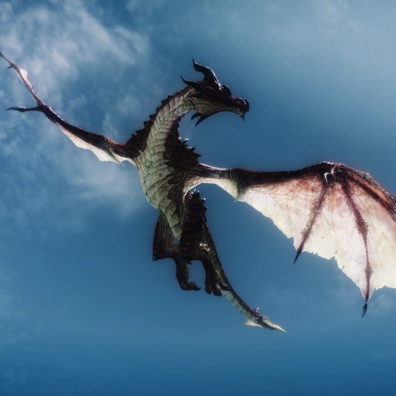 10 Top Images Of Dragons Flying FULL HD 1080p For PC Desktop 2018 free download click to close image click and drag to move use arrow keys for 800x800