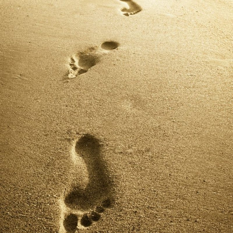 10 Best Footprints In The Sand Images Free FULL HD 1080p For PC Background 2021 free download collective worship when im found in that desert place blessed be 800x800
