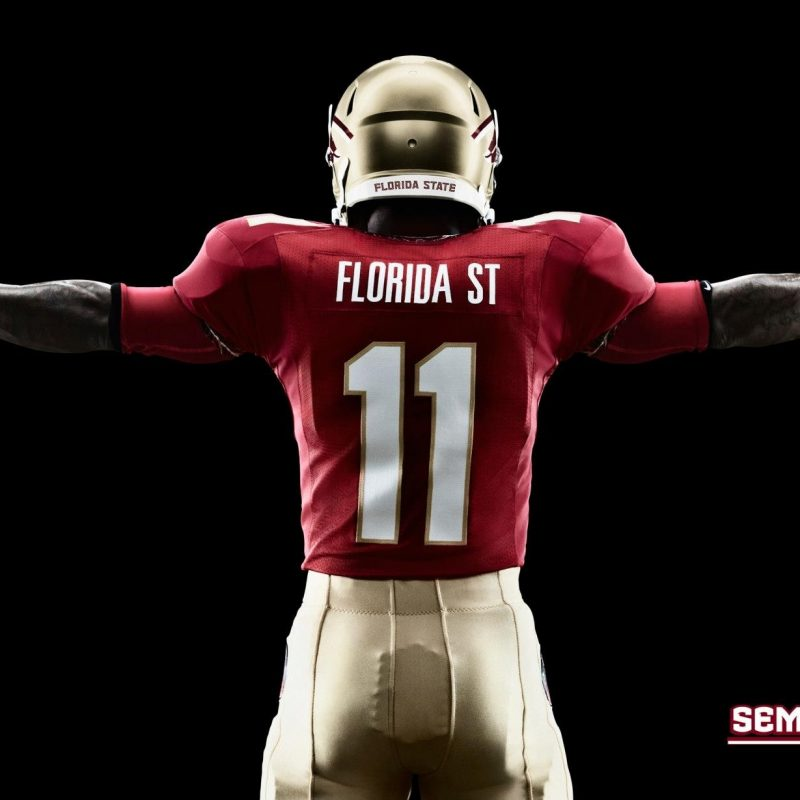 10 Top Florida State Football Wallpaper FULL HD 1920×1080 For PC Background 2021 free download college football wallpapers wallpaper cave adorable wallpapers 800x800