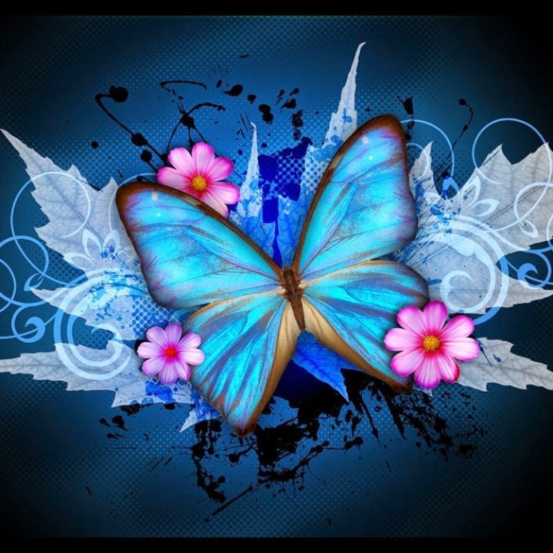 10 Most Popular Wallpapers Butterfly Free Download FULL HD 1080p For PC Background 2020 free download colorful butterfly designs background for desktop abstract hd wallpapers 800x800