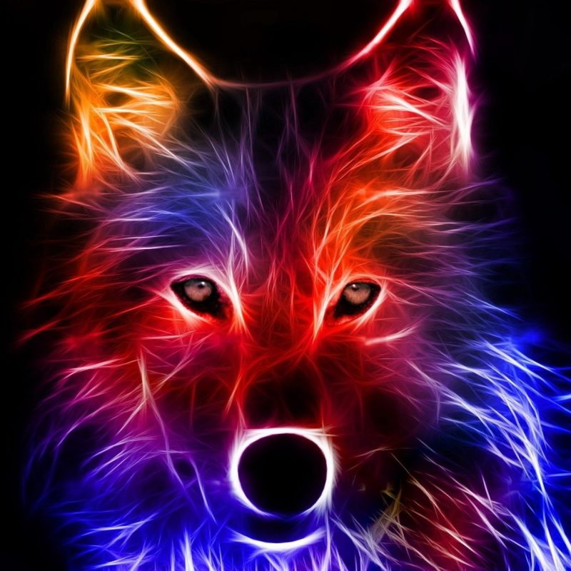 10 New Cool Wallpapers Of Wolves FULL HD 1920×1080 For PC Desktop 2018 free download cool backgrounds best wallpaper background pinteres 1 800x800