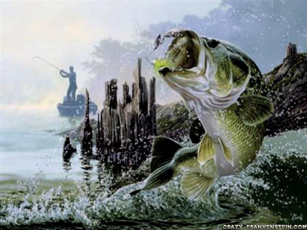 cool fishing quotes. quotesgram | fishing | pinterest | fish