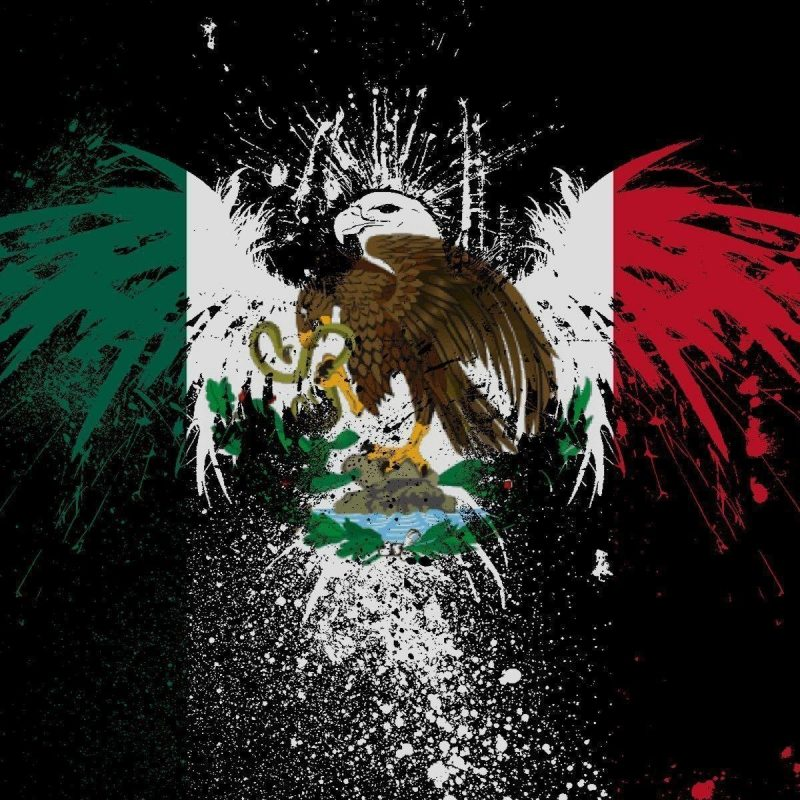 10 Latest Cool Mexico Flag Pictures FULL HD 1920×1080 For PC Background 2018 free download cool mexican backgrounds wallpaper cave 800x800