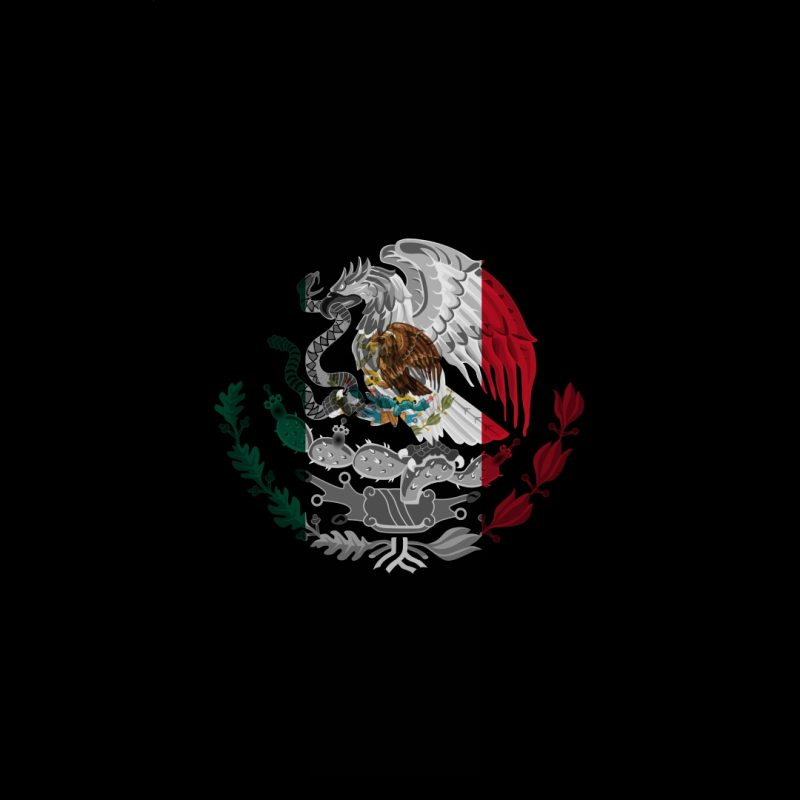 10 Latest Cool Mexico Flag Pictures FULL HD 1920×1080 For PC Background 2018 free download cool mexico flag wallpaper places to visit pinterest mexico flag 800x800