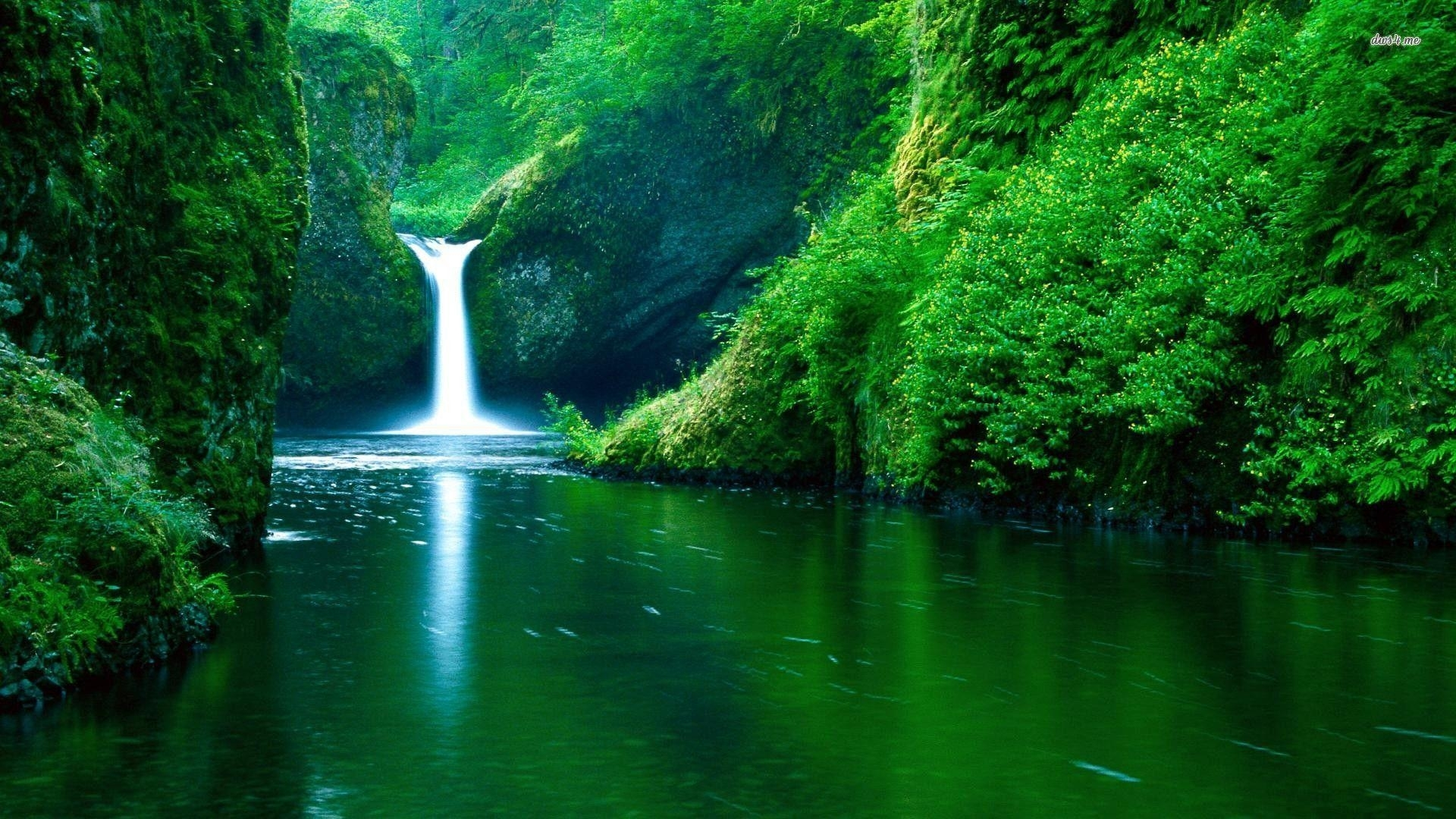 cool nature backgrounds - wallpaper cave