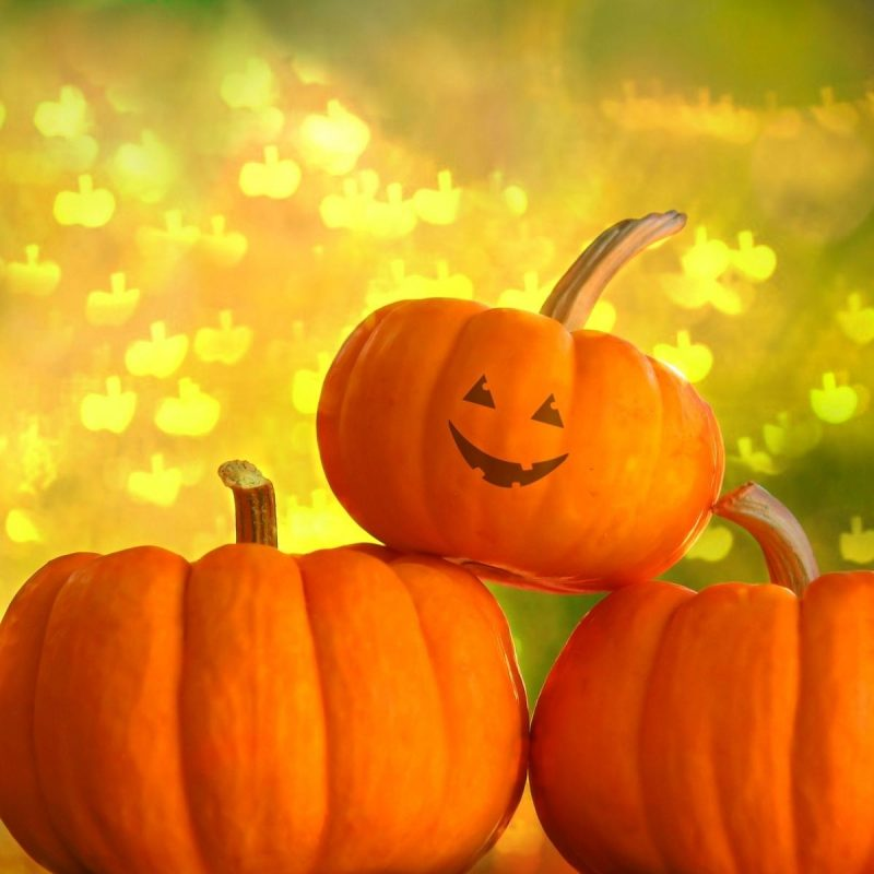 10 Top Cute Pumpkin Halloween Wallpaper FULL HD 1920×1080 For PC Desktop 2018 free download cool photography pumpkin wallpaper hd wallpaper wallpaperlepi 1 800x800