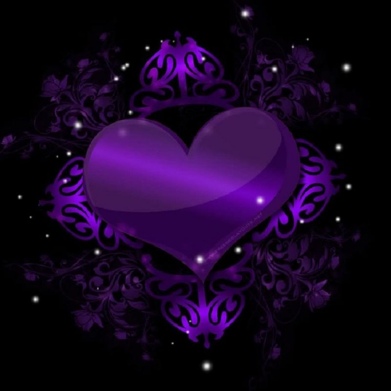 10 Most Popular Pictures Of Purple Hearts FULL HD 1920×1080 For PC Desktop 2020 free download cool purple hearts backgrounds i17 981x921 passionate for 800x800