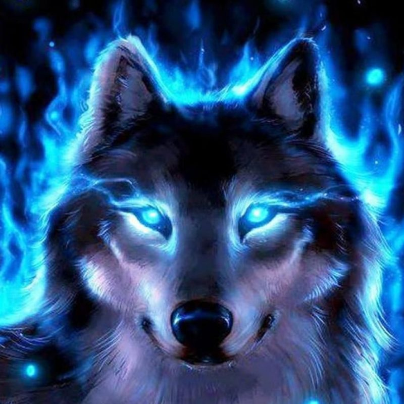 10 Most Popular Cool Wolf Wallpaper Hd FULL HD 1080p For PC Desktop 2020 free download cool wolves backgrounds wallpaper free hd wallpapers book art 800x800