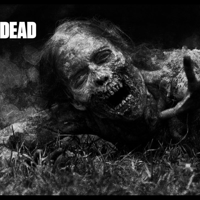 10 Top Walking Dead Wallpapers For Free FULL HD 1080p For PC Desktop 2021 free download coolest zombie best walking dead wallpapers 800x800